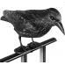 Ворон для отпугивания птиц