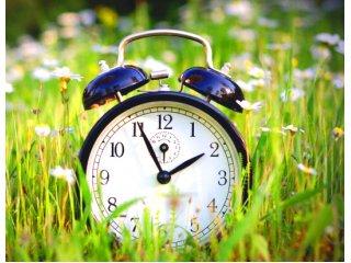 Что делать, если садовые работы занимают слишком много времени?
