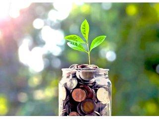 Экономим без ущерба для урожая